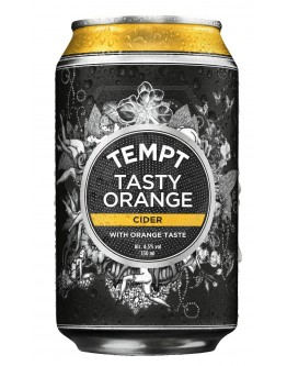 Tempt Tasty Orange 24x0,33l